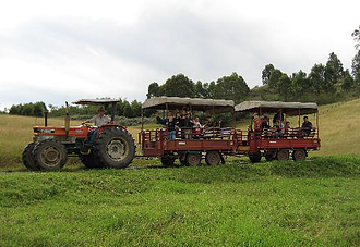 A Day at  Calmsley Hill City Farm