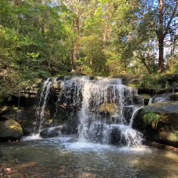 Family-Friendly Bush Walks + 2 Local Waterfalls