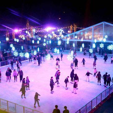 Winter Festival & Iceskating Guide