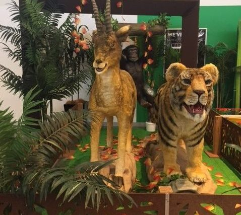 An Animal Zoo Safari is coming to Rhodes Waterside!