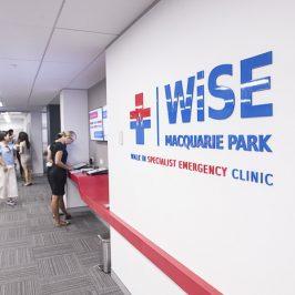 WiSE Specialist Emergency Clinic