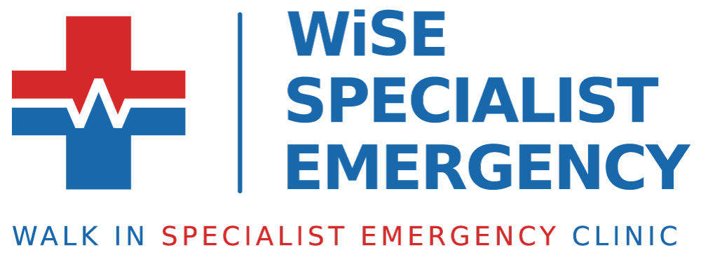 WiSE Specialist Emergency Clinic, Macquarie Park