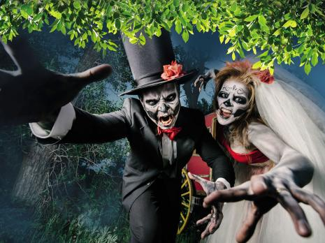 9 Spine-Tingling Halloween Events for Kids AND Adults!