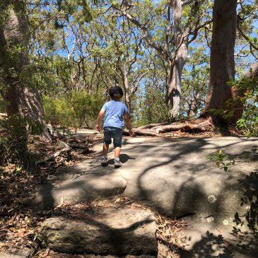 Berry Island Reserve- Playground + Bush Walk on Sydney Harbour