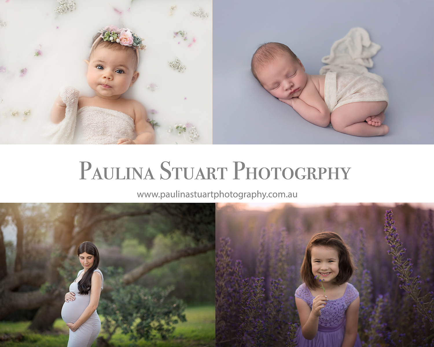Paulina Stuart Photography
