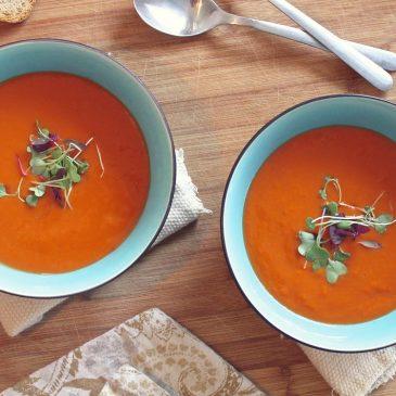 Fave Tomato Soup Recipe
