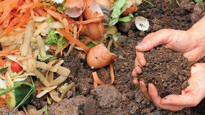 Composting and Worm Farming Workshop