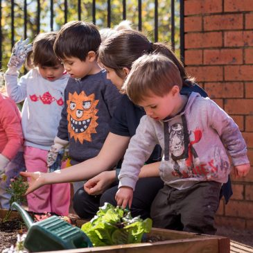 Farran Street Quality Child Care Centre, Lane Cove