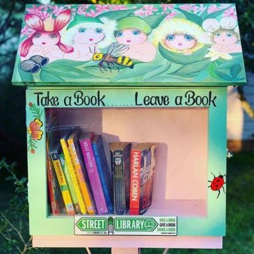 Street Libraries – The Low Down!