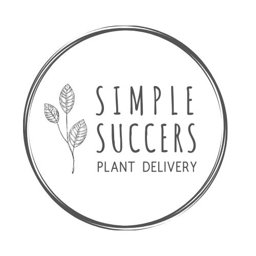 Simple Succers
