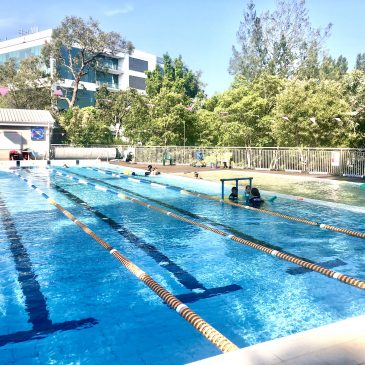 Learn-To-Swim at North Ryde Fitness + Aquatic – a Tranquil Oasis