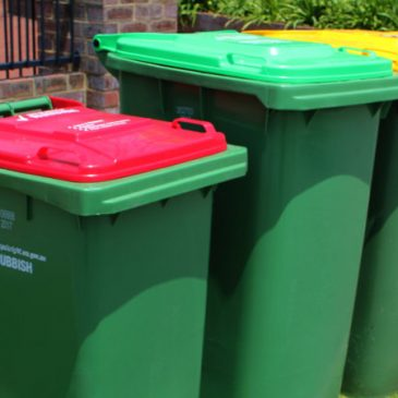 6 Simple Recycling Tips That Can Make a Big Difference in the Environment
