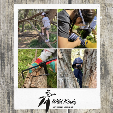 Wild Kindy – Dec / Jan School Holiday Activities Guide