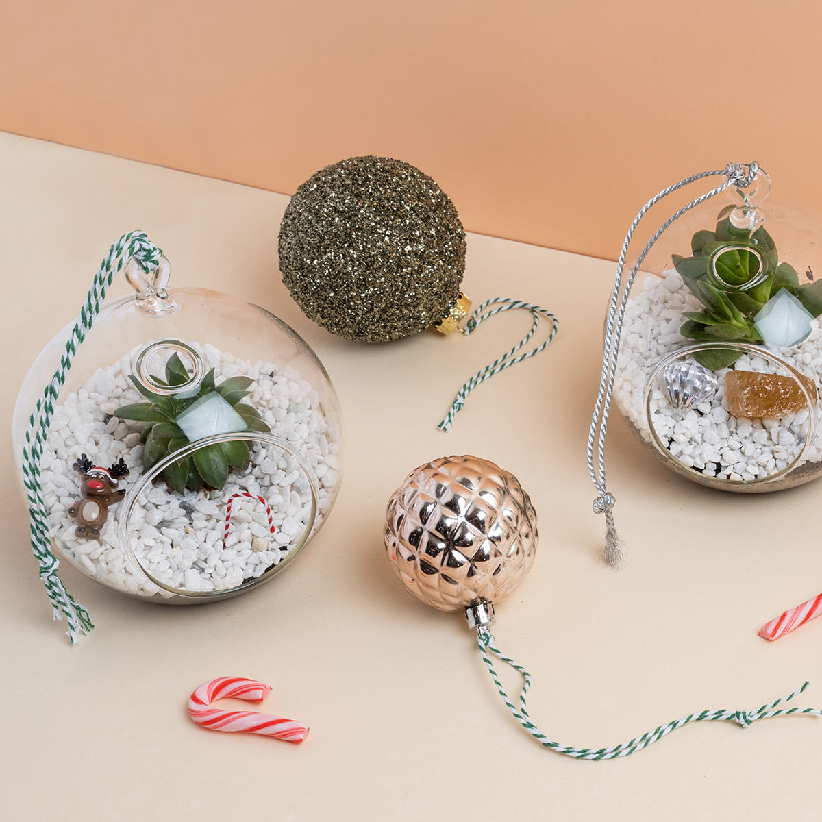Christmas Terrarium Bauble Workshop
